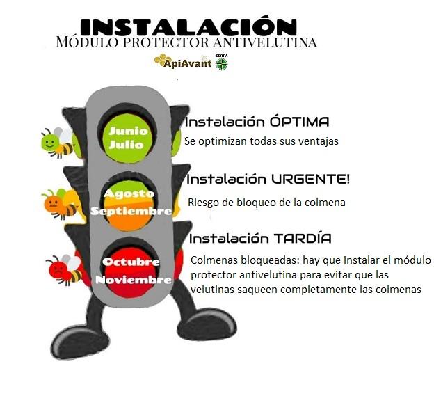 Fecha instalacion modulo protector de colmenas anti velutina